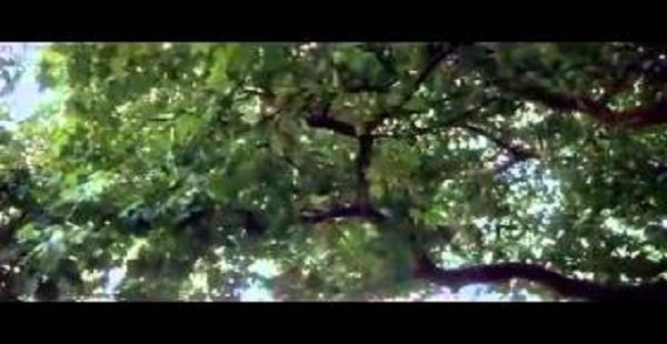 The Omen (1976) Full Movie